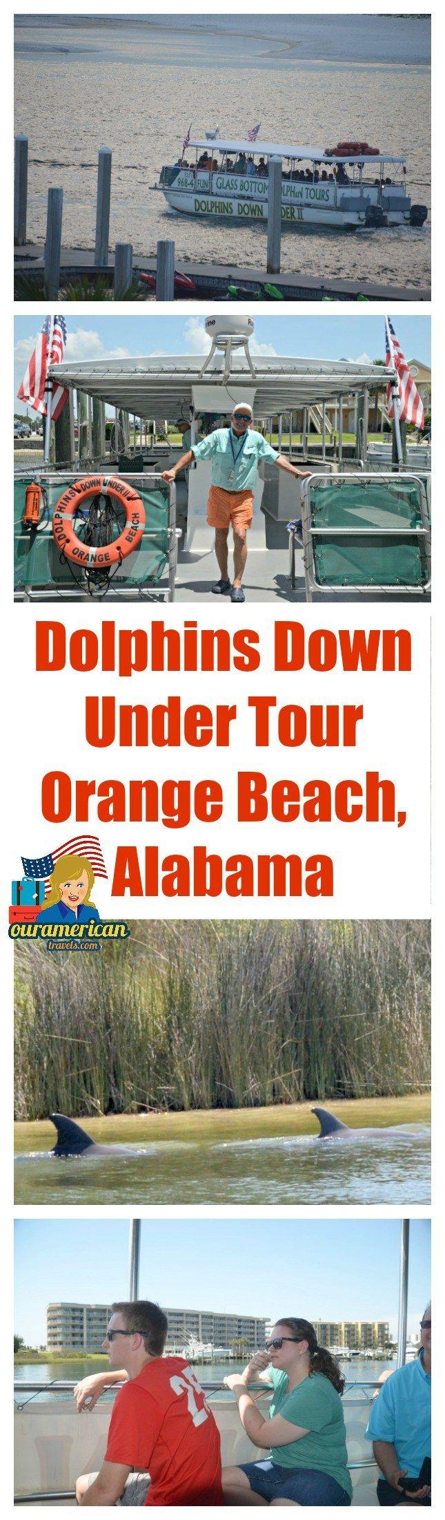 Dolphins Down Under Tour Orange Beach Alabama #travel #Orange Beach #Alabama…