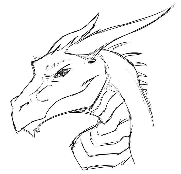 Fox Face Line Drawing : As i have explained before my fursona is a foxdragon and