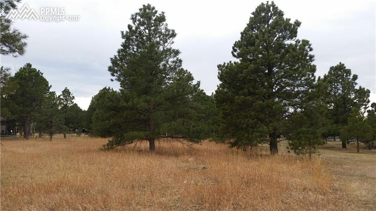 One of the few remaining buildable lots in Woodmoor (northern edge Colorado Springs, Colorado). Lightly treed, level, School District 38 schools, 5 minutes from I-25 so you can commute to Denver or Colorado Springs. Call us at 719-398-1999 if you have questions about this land.  PikesPeakHomeTeam