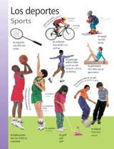 Sports (Los deportes) themed vocabulary | Help students learn the Spanish words for sports and sports equipment with these handouts. Get the printables from TeacherVision: https://www.teachervision.com/spanish-language/printable/70426.html