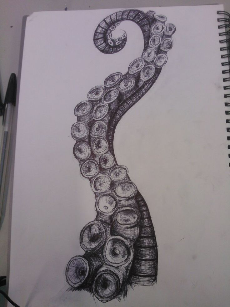 Octopus Tattoos, Tentacle Drawing, Octopus Tentacles Art, Octopus Sketch, Octopus Tentacles Drawing, Octopus Art Drawing, Octopus Tentacle Tattoo