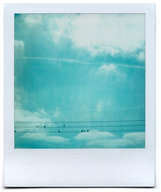 polariod cloud love