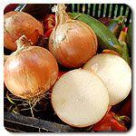 Organic Walla Walla Sweet Onion