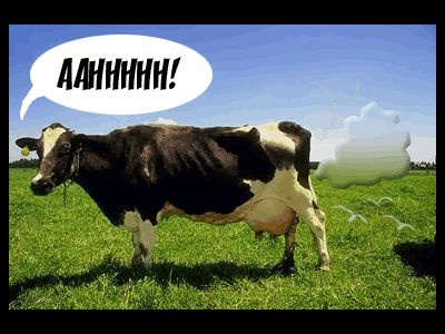 Farting Cows Start Fire! | S.O.M.F