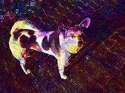 "New artwork for sale! - "" Dog Awakened Hybrid Patched  by PixBreak Art "" - http://ift.tt/2tNe9Eh"