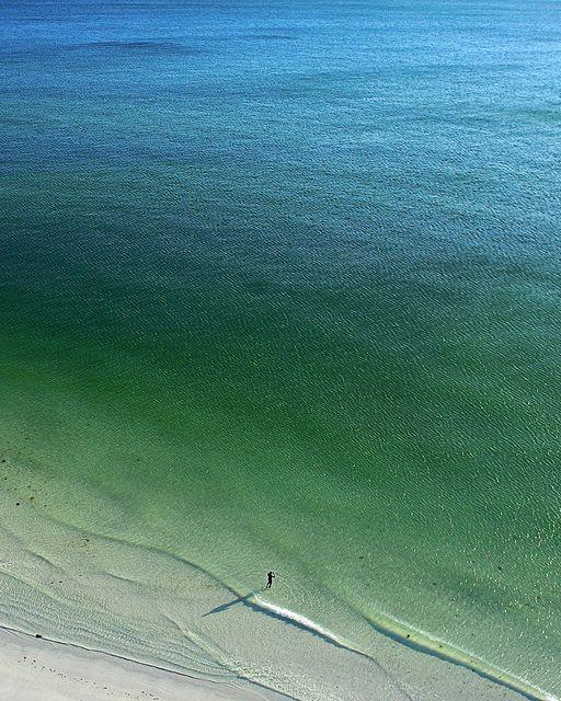 Lone Swimmer at Lido Beach, Florida by NestorDesigns, via Flickr