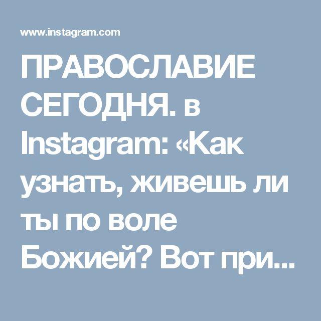 ПРАВОСЛАВИЕ СЕГОДНЯ. в Instagram: «Как узнать, живешь ли ты по воле Божией? Вот признак: если ты скорбишь о какой-либо вещи, то значит не вполне предался воле Божией. Кто…» • Instagram