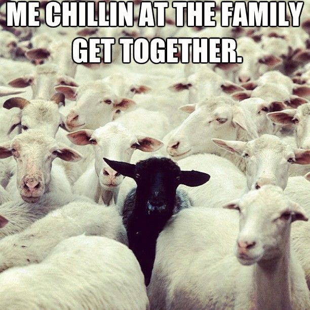 Black Sheep Black Sheep Of The Family Black Sheep Funny Picture Quotes