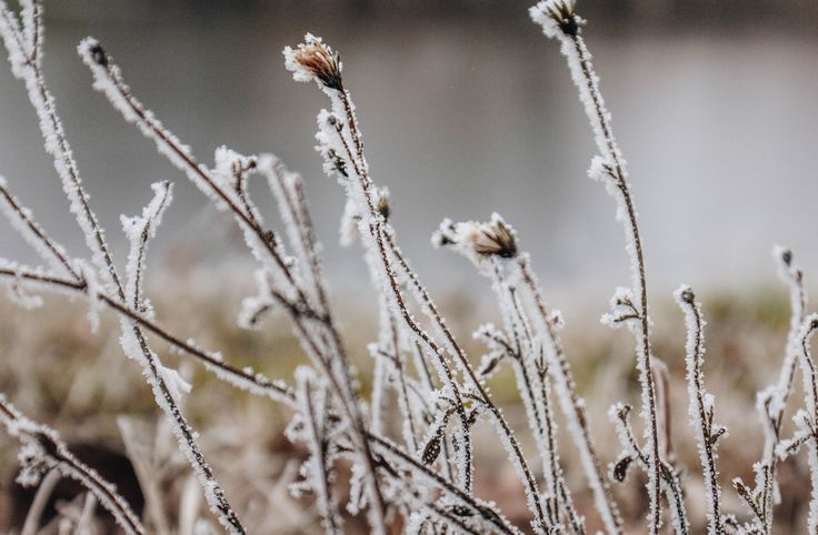 7 TIPS TO MASTER YOUR WINTER PHOTOGRAPHY – Parts of the Sun
