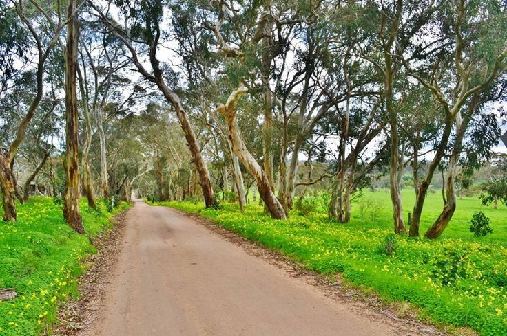 Wistow in the Adelaide Hills