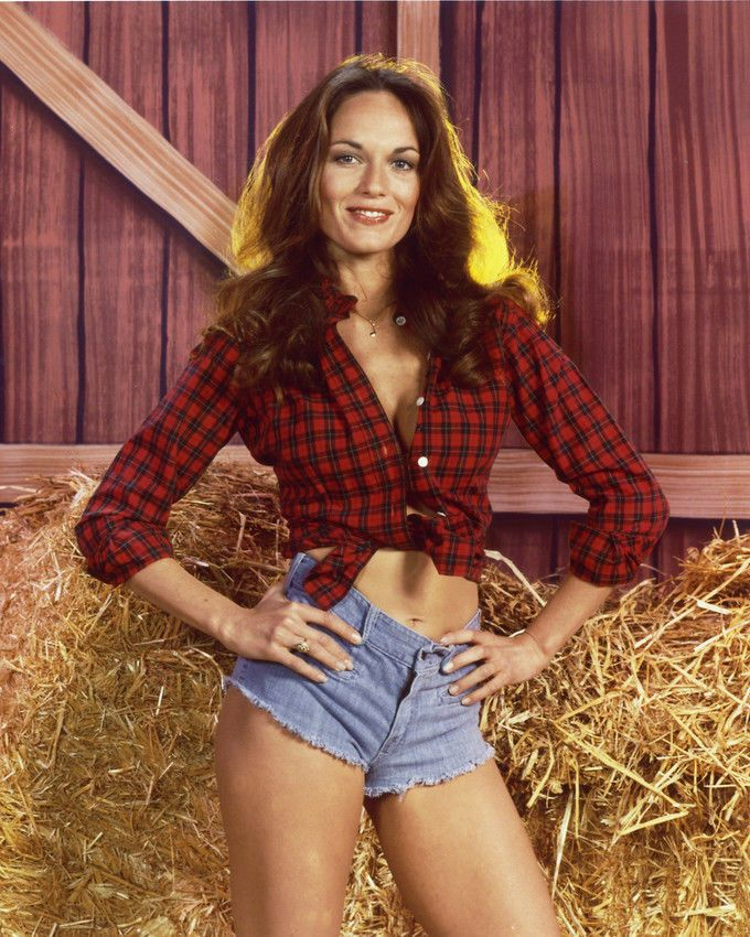 CATHERINE BACH THE DUKES OF HAZZARD 8X10 PHOTO IN BARN
