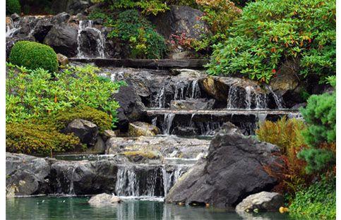 57 best jardin japonais images on pinterest japanese for Cascade jardin japonais