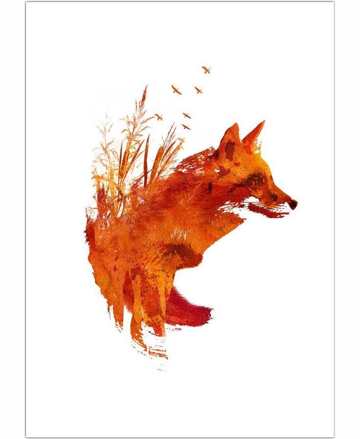 Plattensee Fox of Róbert Farkas now on JUNIQE!