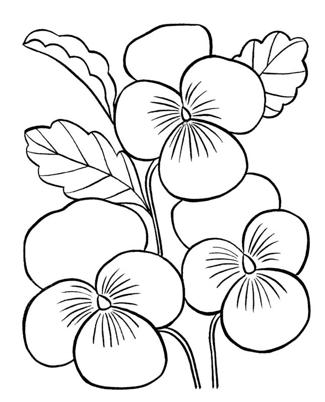 Embroidery Pattern from Flowers Coloring Pages For Adults. jwt