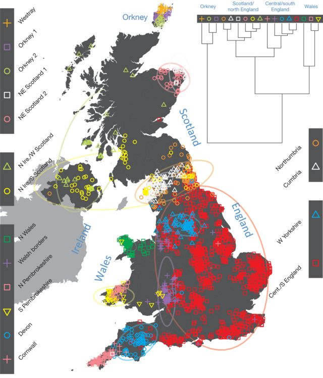 DNA map of UK migration history shows Vikings drew the line at pillaging   Ars Technica