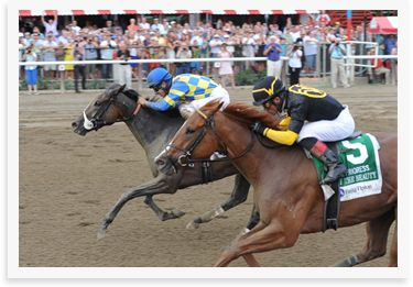 At https://www.bettingrewards.com.au, you'll find betting sites that are the best in the business and you can rest assured that every online establishment has been thoroughly vetted and found to be suitable for Australian punters.  #Game on