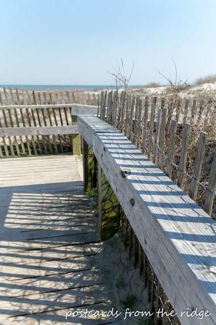 Postcards from the Ridge: 12 Things to see and do on Kiawah Island #travel