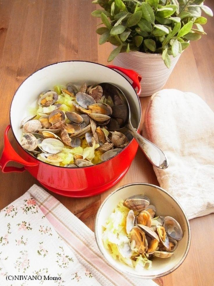 簡単なのにとびきりおいしい! スペイン風「あさりの酒蒸し」を作る ... 日本の「あさりの酒蒸し」の作り方は、たとえばこちらをご参考にどうぞ↓ こちらは下にキャベツを敷いて、あさりのスープをさらに吸わせていただくレシピです。)