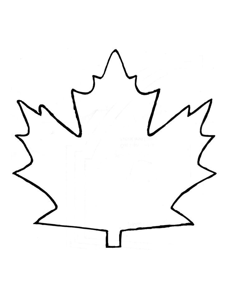 The  Best Maple Leaf Template Ideas On   Leaf