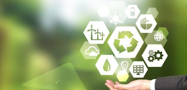 Ideas de negocio ecológicas