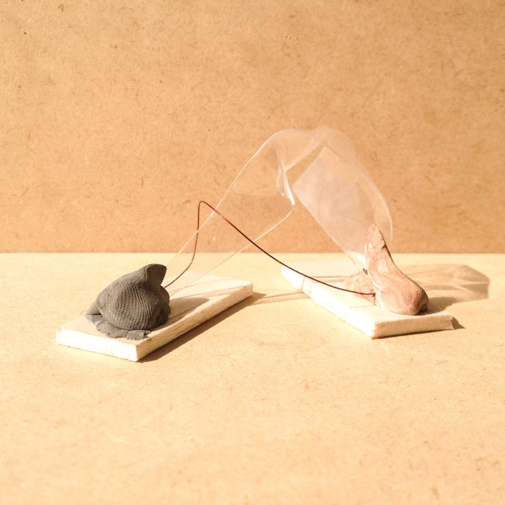 exercise five / model N: transparency film, balsa wood and wire