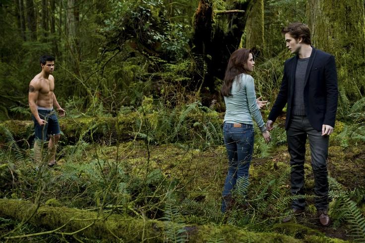 Team Jacob or Team Edward?  The Twilight Saga: New Moon