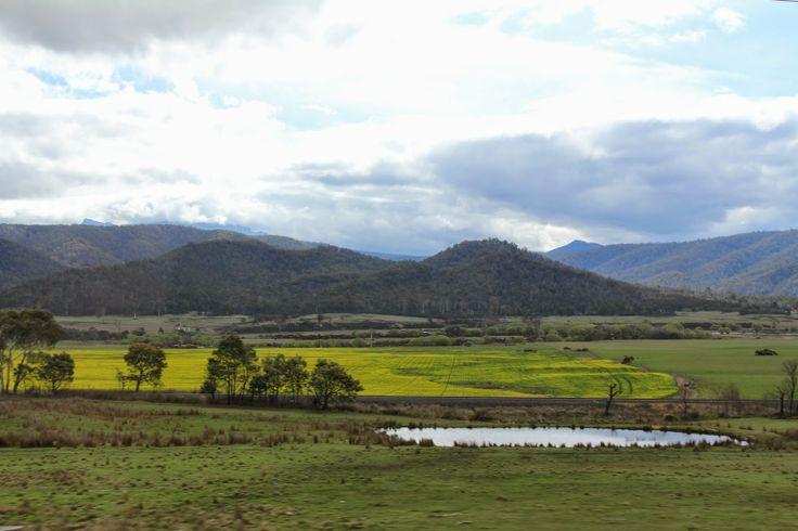 Tasmania. Beautiful one day... a Devil the next.