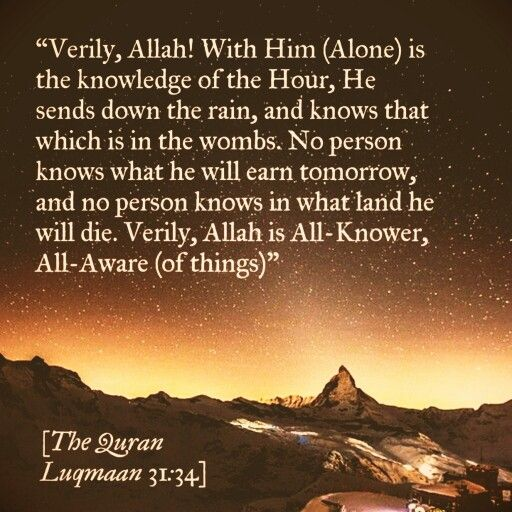 #Allah is All-Knower (#Quran)