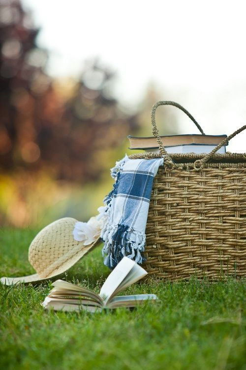 picnic basket, straw hat, blanket, books, and the great outdoors