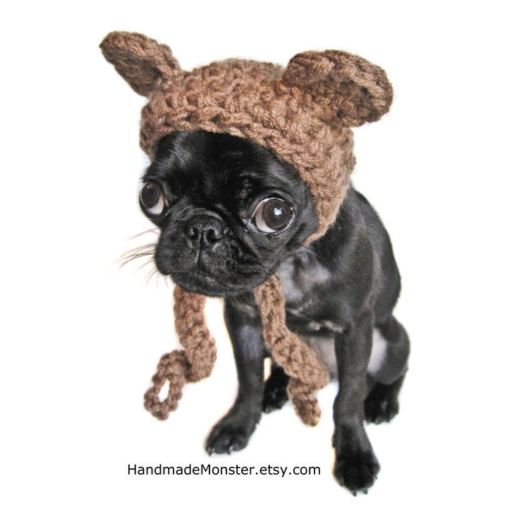 Ewok Hat: 17 Best Ideas About Ewok Dog Costume On Pinterest
