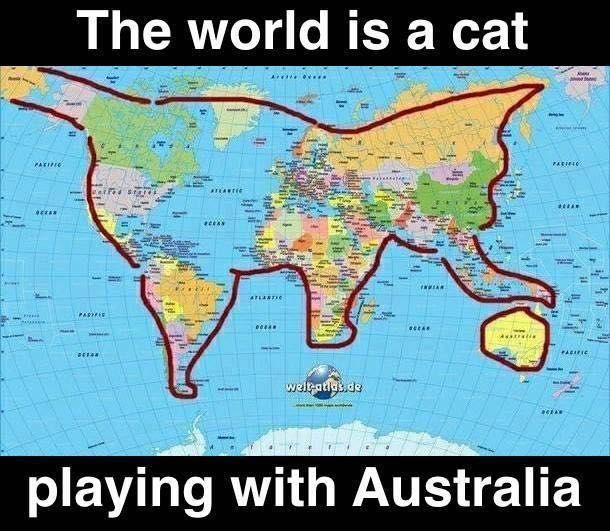 El mundo es un gato jugando con Australia!