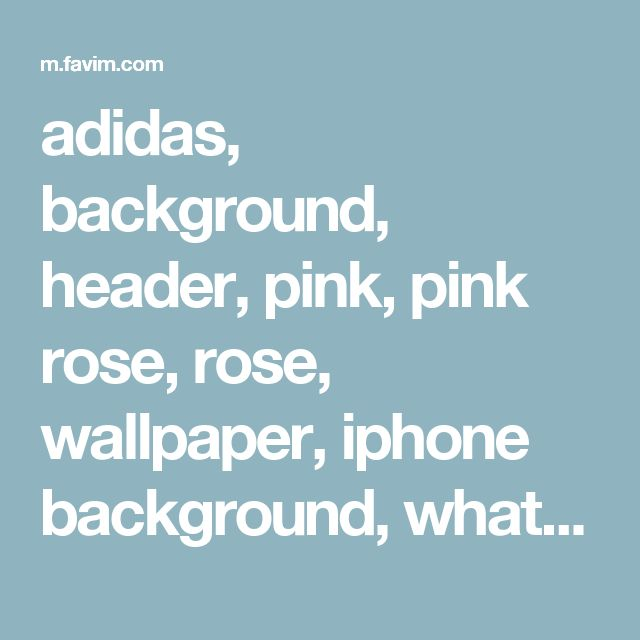 adidas, background, header, pink, pink rose, rose, wallpaper, iphone background, whatsapp background, adidas wallpaper - image #2962121 by Bobbym on Favim.com