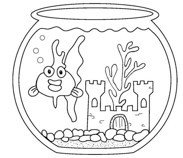 11 ausmalbild fische aquarium download kostenlos