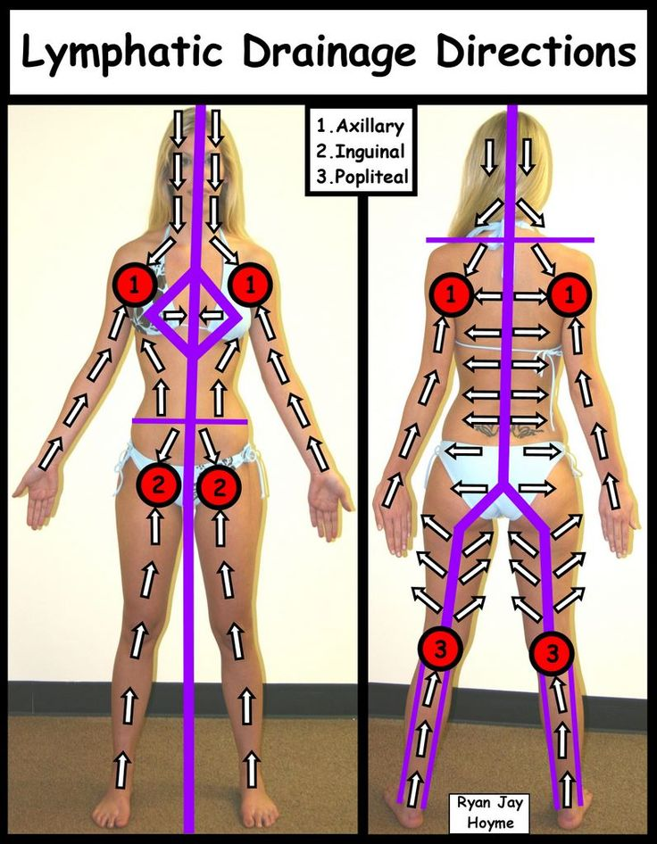 Lymphatic drainage directions