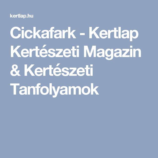 Cickafark - Kertlap Kertészeti Magazin & Kertészeti Tanfolyamok