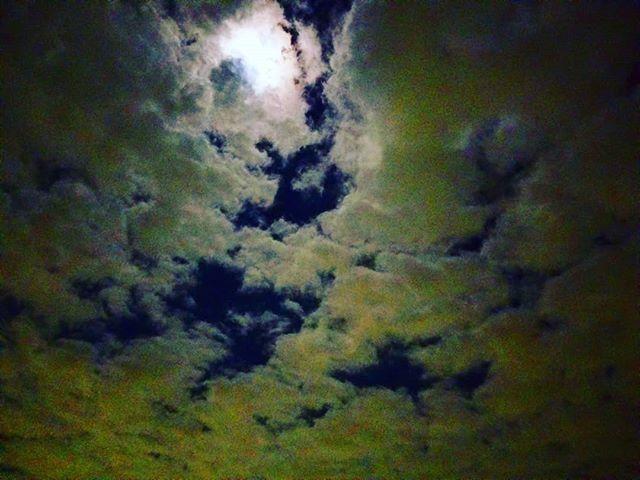 おぼろ月夜