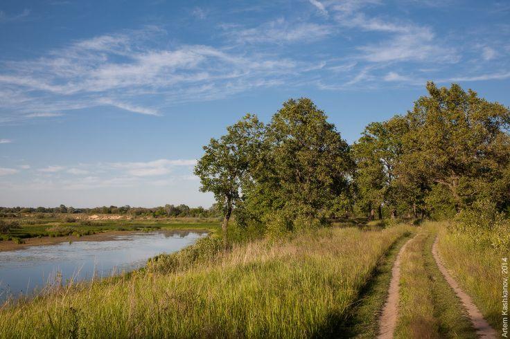 Июль - макушка лета (2014) — Фото природы - лето. Летние пейзажи. Красивые летние картинки. Фотосайт Артема Кашканова.