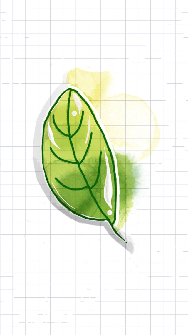 Green leaf, watercolor, watercolor ideas, tayasui sketches, cool, easy