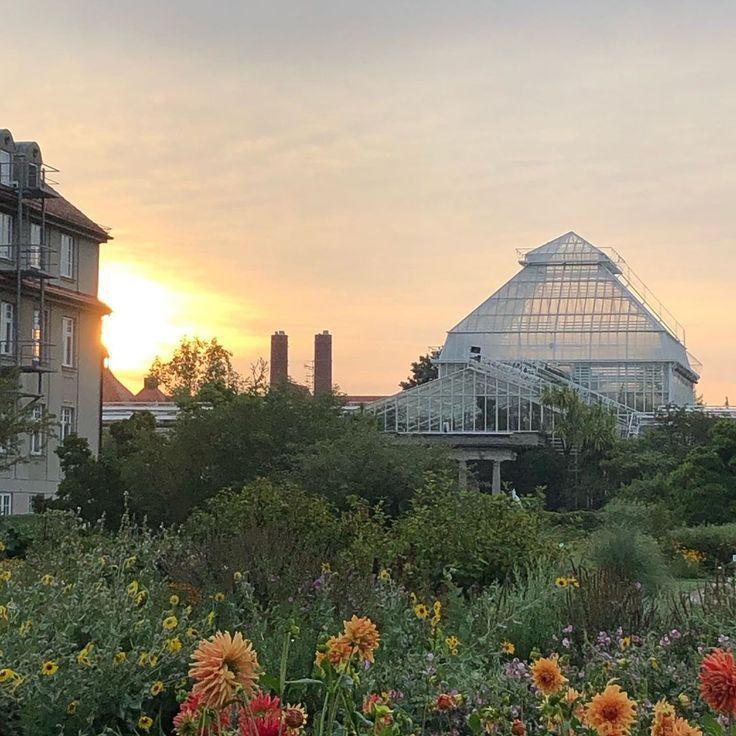 Botanischen Garten Guten Morgen Munchennymphenburg Sonnenaufgang Guten Morgen X1f31e Sonnenaufgang Im Botanischen Garten House Styles Home Decor Decor