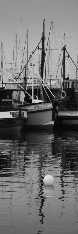 Hout Bay Harbour, Cape Town #Dan Swart
