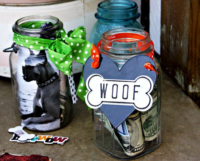 donation jars for boxer rescue