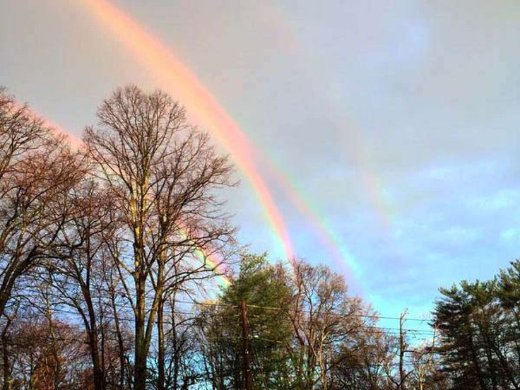 A Double Double-Amanda Curtis via Twitter This tweet of a quadruple rainbow has received more than 1,000 retweets after it was posted by Amanda Curtis, the CEO of a New York fashion company- CNN weather producer Rachel Aissen explained was a double rainbow that was reflected off a body of water and into into the sky. | Popular Science