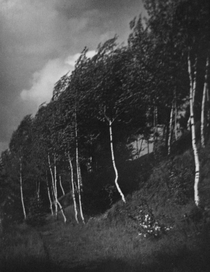 Josef Sudek. The Wind, 1918-22