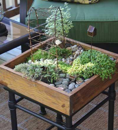 Mini Indoor Fairy Gardens Provide The Children Or