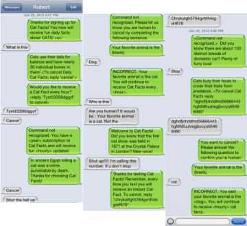 """Masterful """"Cat Facts"""" Texting Prank"""
