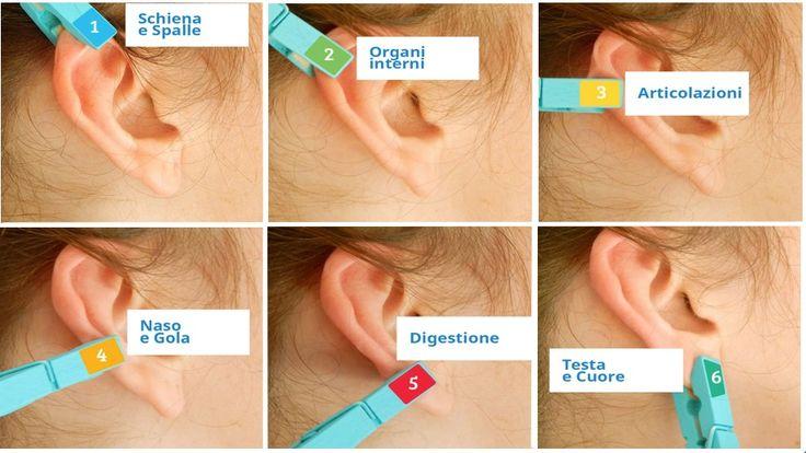 Auricoloterapia-riflessologia-orecchio-umano.jpg (916×516)