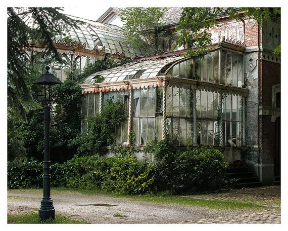 Fine art photography, Urban Decay. Abandoned Greenhouse, 5×7, 8×10 Wall Decor, Home Decor, Abandoned, Green, Brown, Fine art print