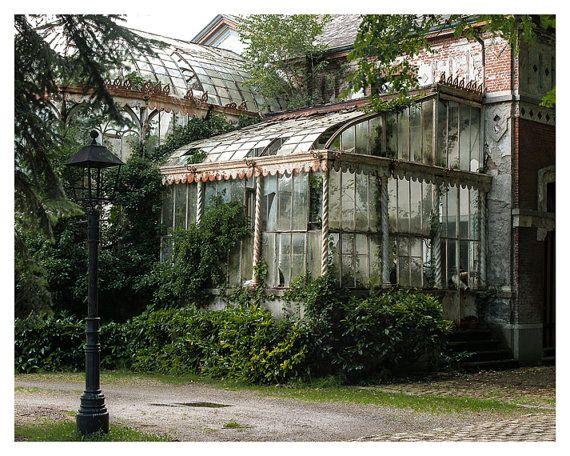 Fine art photography, Urban Decay. Abandoned Greenhouse, 5x7, 8x10 Wall Decor, Home Decor, Abandoned, Green, Brown, Fine art print