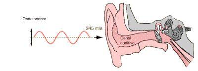 Movimiento ondulatorio. Ondas sonoras: aplicaciones