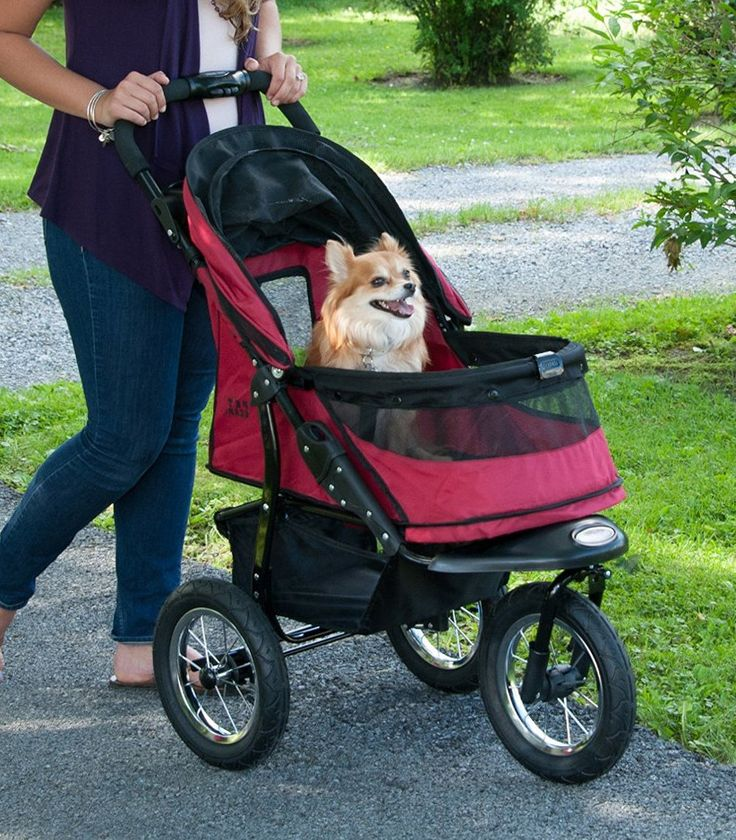 Pet Gear Jogger NoZip Pet Stroller for Jogging & Running